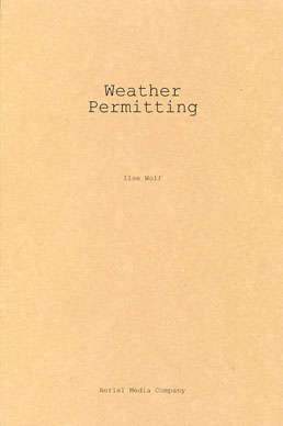 Weather Permitting by Ilse Wolf