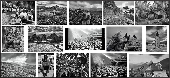 Sebastiao Salgado, The Scent of a Dream - photography