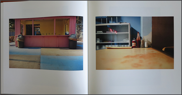 William Eggleston | the Democratic Forest - Selected Works